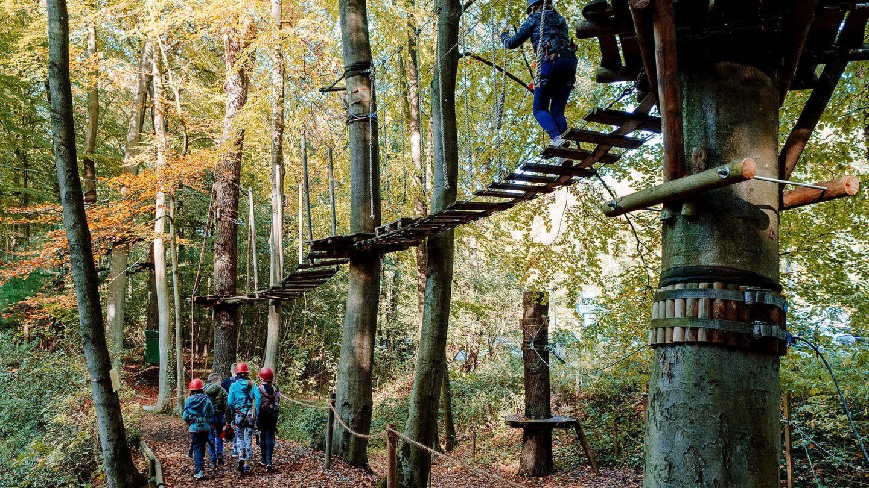 Kletterwald 2